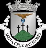Logotipo Câmara Municipal de Santa Cruz das Flores