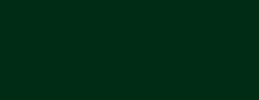 Logotipo Câmara Municipal de Paços de Ferreira